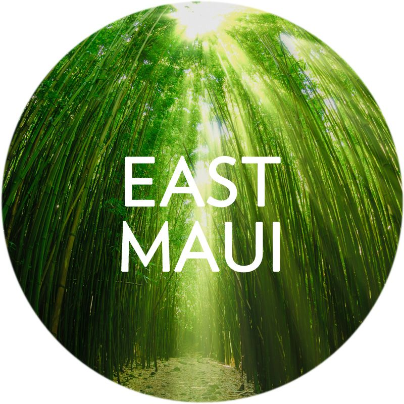 Search East Maui Real Estate