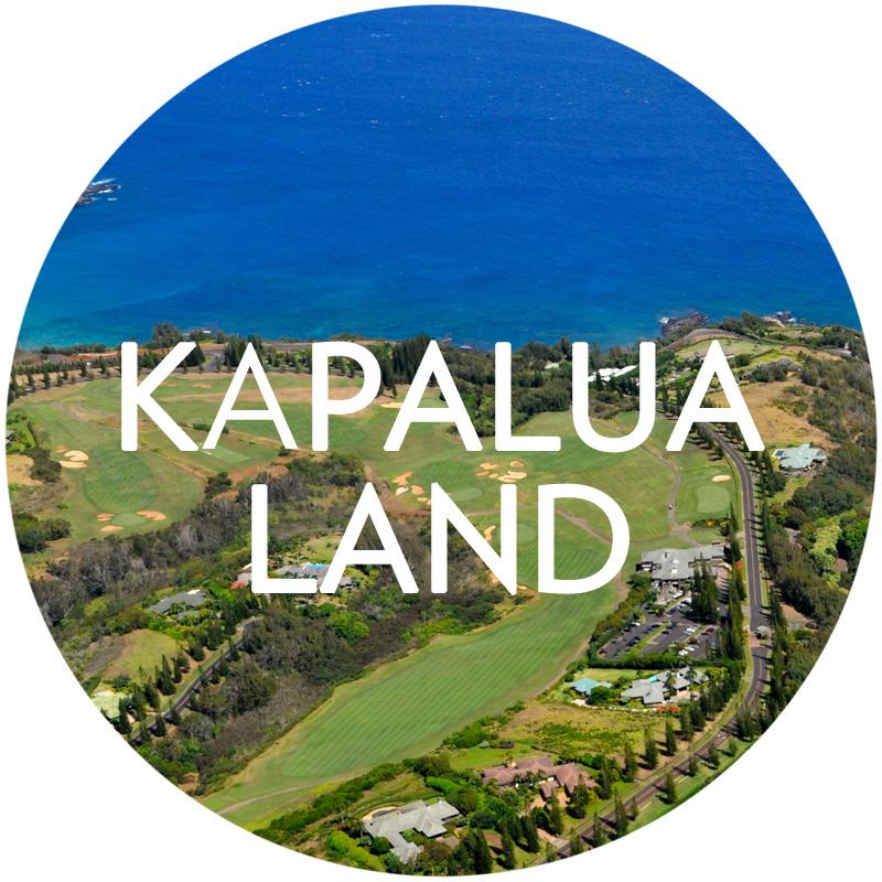 Search Kapalua Land for Sale